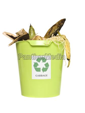 natura morta cibo ambiente rilasciato verde
