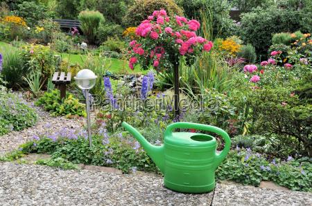 garden in late summer