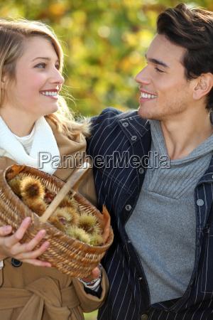 castagne raccolta coppia in cestino