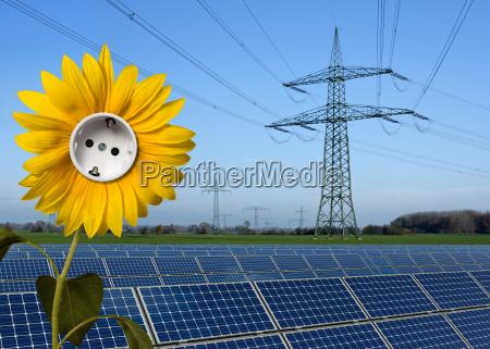 parco solare girasole con presa e