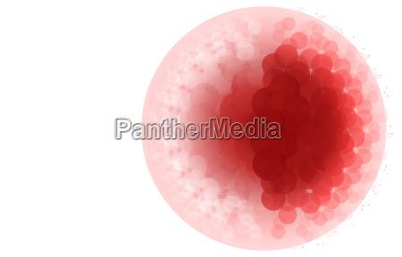 grafico illustrazione cellula nucleo cellulare virus