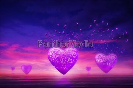 porpora cuori amare amore innamorato acqua