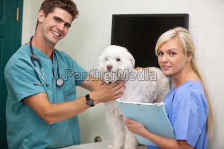 dottore medico donna persone popolare uomo