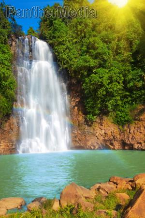 bello bella luce soleggiato cascata giungla
