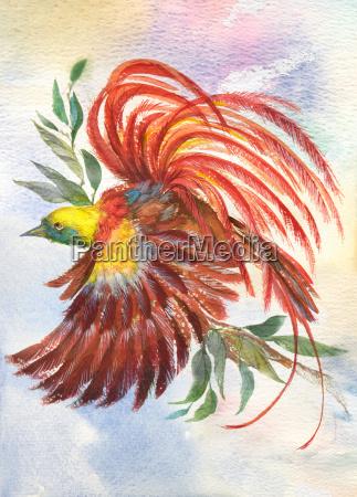 uccello luminoso