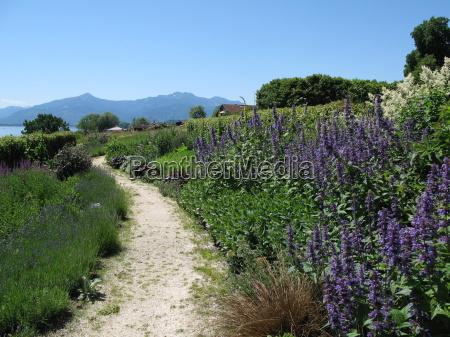 montagne piantare seminare escursione gita lontano