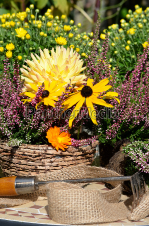 giardino decorazioni floreali giardinaggio brughiera giardini