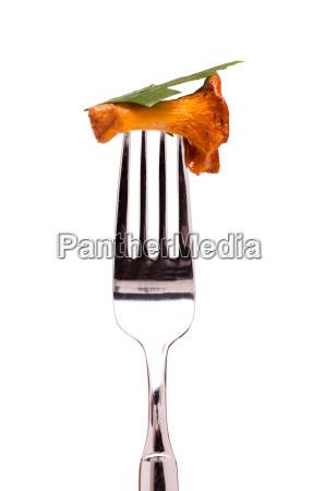 cibo forchetta prezzemolo finferli fondale di