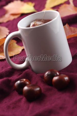 te tea salute benessere freddo catarro