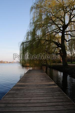blu albero legno ponte primavera amburgo