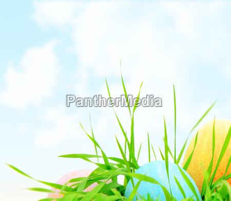 blu verde pasqua uova colorato cromatico