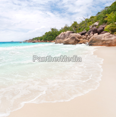 tropical beach with white sand and