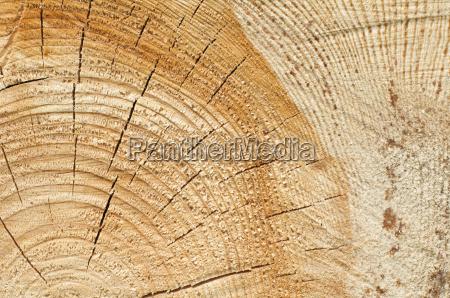 background of split wood