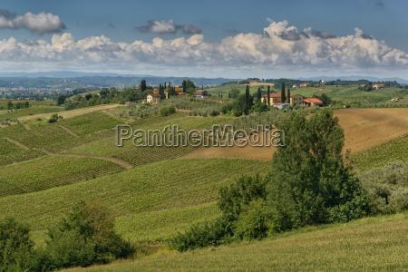 collina toscana vista sguardo italia terreno