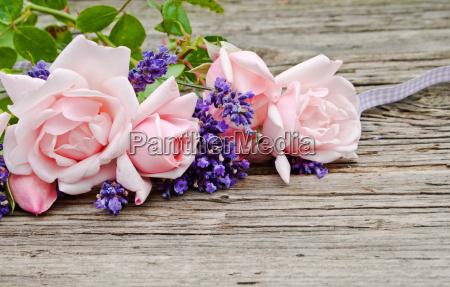 blu presentare lavagna pannello fiore rosa