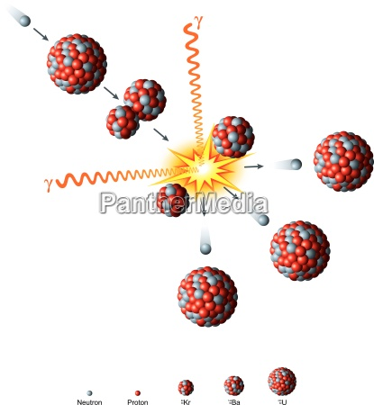 fissione nucleare delluranio