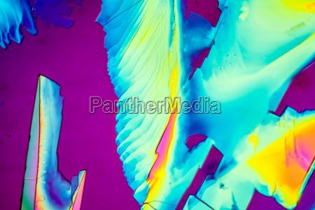 uomo umano cristalli microscopio corpo urea