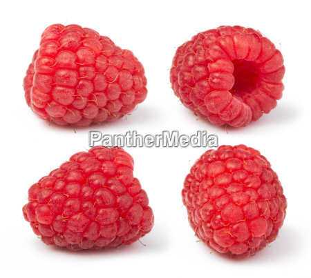 raspberries white isolated
