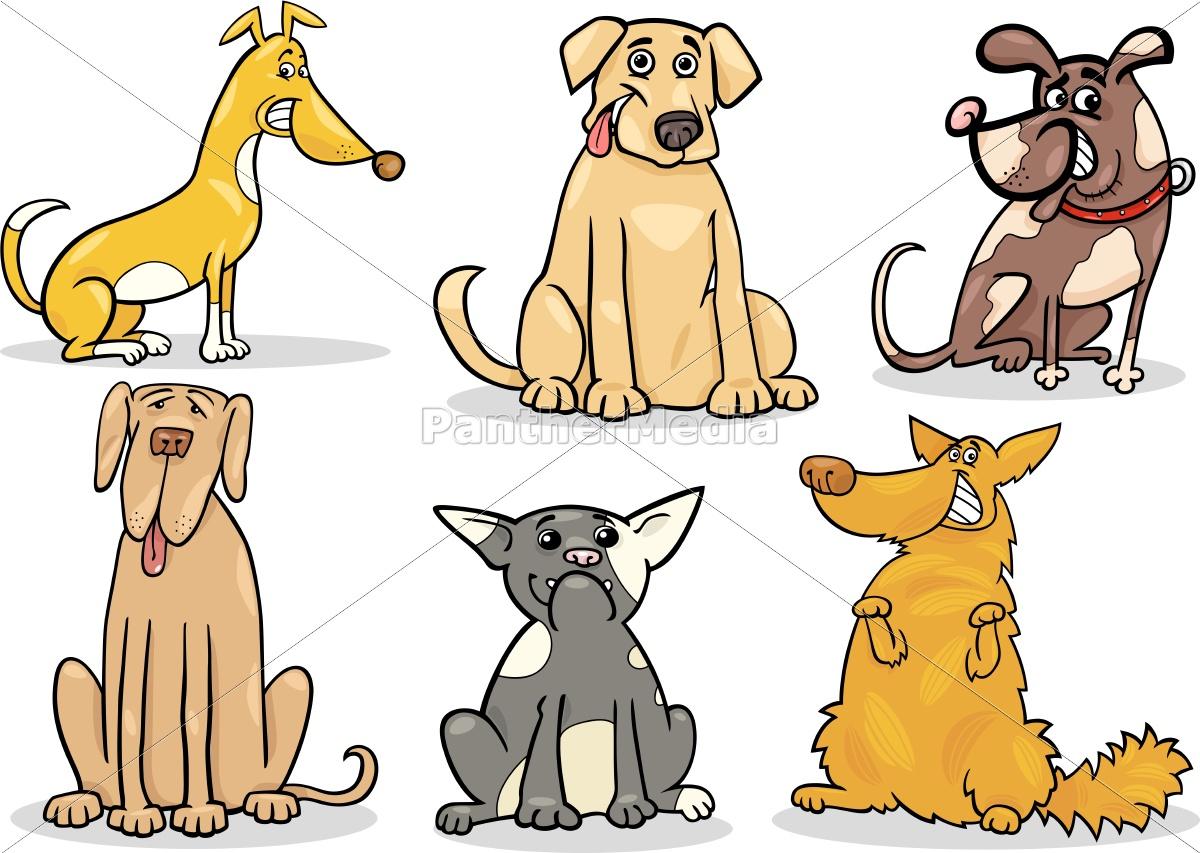 cani, carini, set, illustrazione, cartone, animato - 10085836