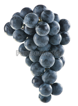 bunch, of, fresh, red, grapes, isolated - 10107213