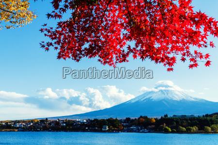mt., fuji, in, autumn - 10261301