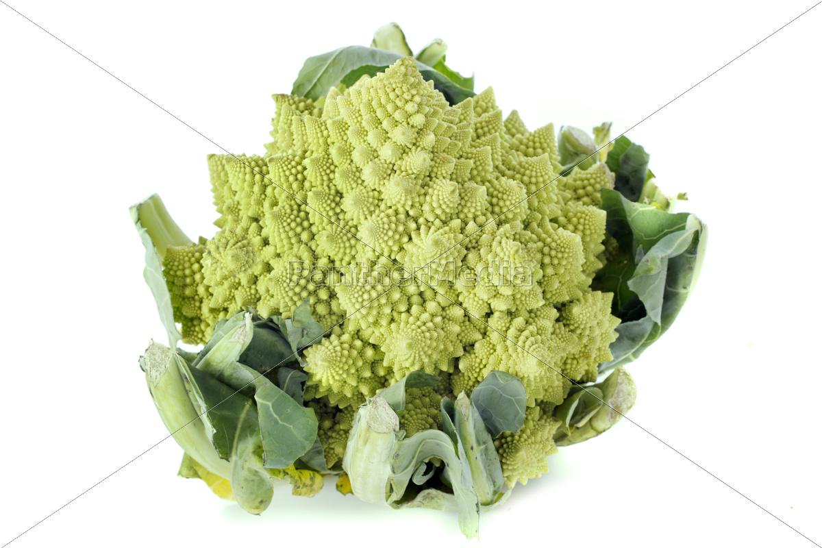 broccolo, romanesco - 10298929