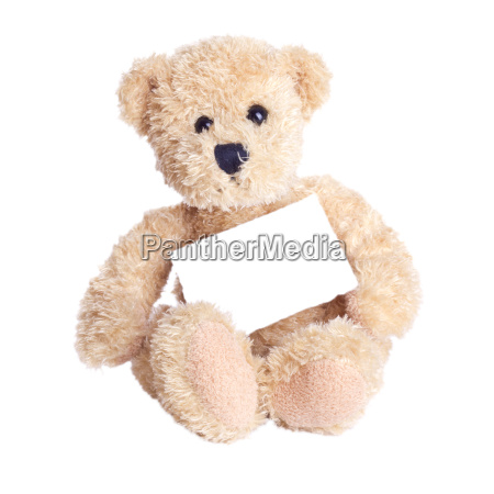 card copy space paper play teddy