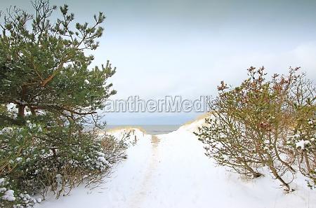 winter on the baltic sea