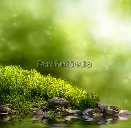 la natura verde come sfondo