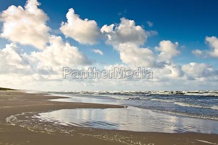 spiaggia di sabbia sul mar baltico