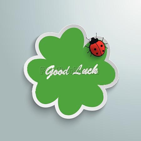 saluti vacanza signora grafico verde scarafaggio
