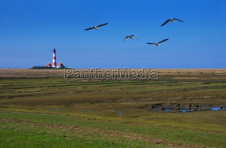 westerhever lighthouse in north frisia