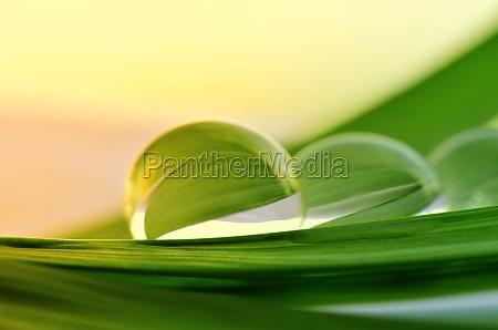 perle dacqua