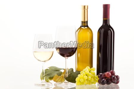 vino rosso e vino bianco con