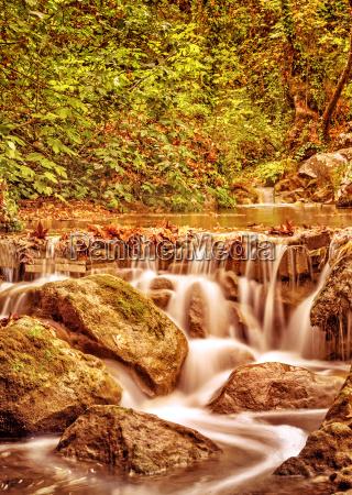 cascata paesaggio natura foresta fiume acqua
