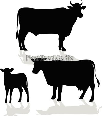 silhouette famiglia mucca con ombra