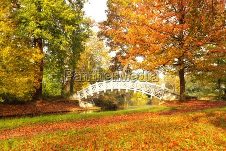 soleggiata giornata autunnale nel parco