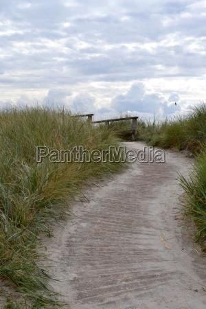 conservazione della natura dune guardia costiera