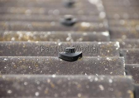 vite di protezione perno sul tetto