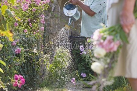 close up di uomo anziano irrigazione