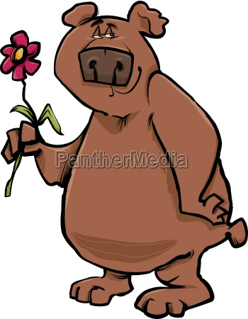 animale fiore pianta orso selvaggio illustrazione