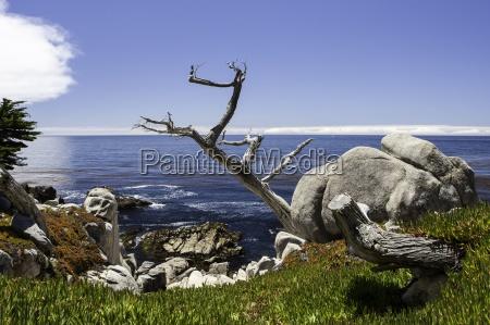 cina roccia