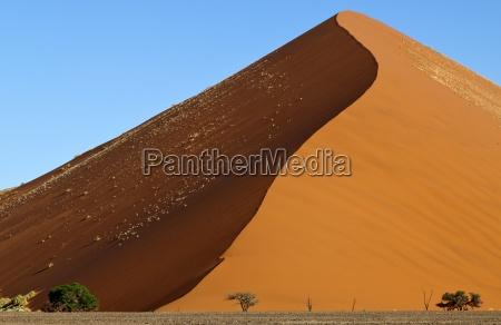 deserto parco nazionale africa savana namibia