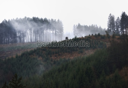 fog at the soesestausee in the