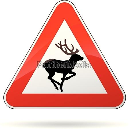 cervi segnale di avvertimento