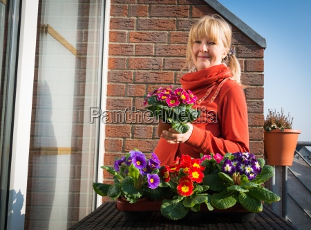 planting in spring with primroses