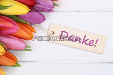 grazie con i fiori dei tulipani