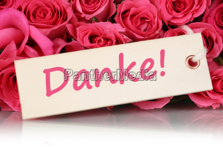 grazie con i fiori di rose