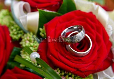 nozze matrimonio convivenza fiore fiori rose