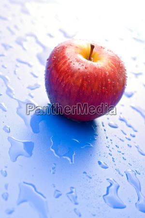 blu cibo frutta bagnato irrigare annaffiare